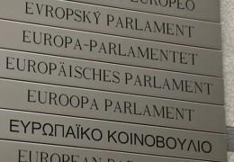 Europawahl und Kommunalwahl: Zu Gast im Studio, Prof. Thorsten Faas, Politologe