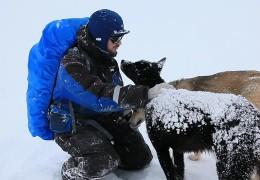Arktisforschung