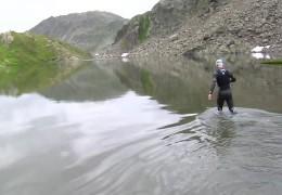 Rheinschwimmer: 1200 Kilometer immer geradeaus