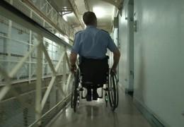 Mit Rollstuhl erfolgreich in Beruf und Sport