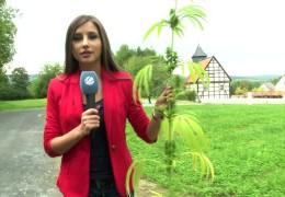 40 Jahre Hessenpark