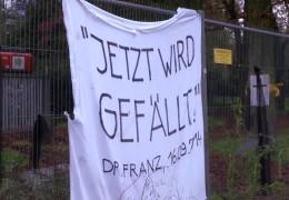 Bürger kämpfen für Baumallee
