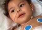 Gericht entscheidet über Herztransplantation