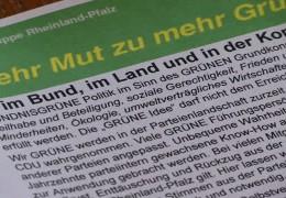 Grüne Basis rebelliert gegen Parteispitze