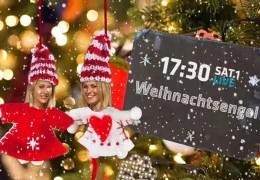 Weihnachtsserie: Das Plätzchenmuseum