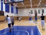 Skyliners mischen die Basketballliga auf