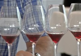 Wein im Kurhaus