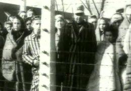 Gedenken an die NS-Opfer