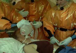 Testfall Seuchenalarm