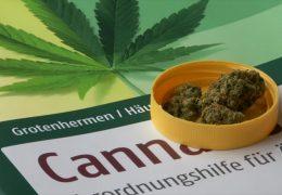 Streit um Cannabis-Medikamente