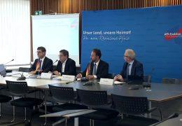 AfD fordert Antworten zur Einwanderung