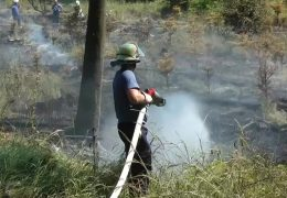 Höchste Warnstufe für Waldbrandgefahr