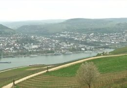 Streit um mögliche Rheinbrücke in Bingen
