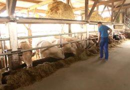 Einer der besten Landwirte Deutschlands kommt aus Wehr in Rheinland-Pfalz