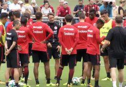 Teamcheck Eintracht Frankfurt