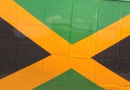 Kommt die Jamaika-Koalition?