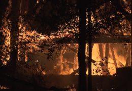 Feuer zerstört Goethe-Turm