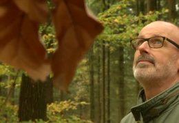 Der Mann der mit und über den Wald spricht