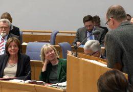 Fremdfirmen in Finanzämtern beschäftigen Mainzer Landtag