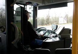 Busfahrer dringend gesucht!
