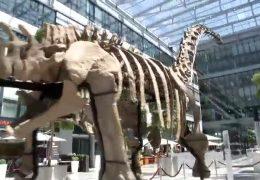 Riesensaurier landet in Frankfurt