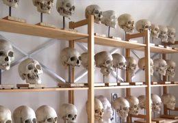 Anatomische Sammlung Marburg