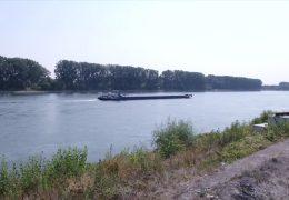 Niedrigwasser erschwert Schiffstransporte