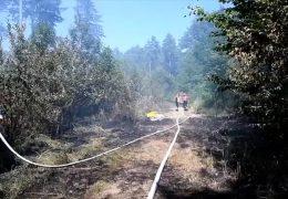 Waldbrandgefahr steigt – sind Löschflugzeuge die Lösung?