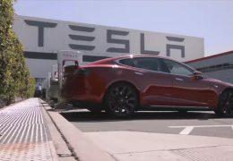 Kommt Tesla nach Rheinland-Pfalz?