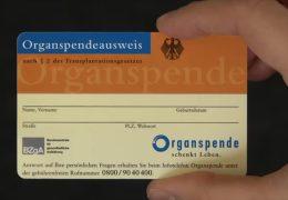 Organspende beschäftigt Mainzer Landtag