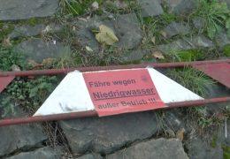 Rheinfähre muss Mitarbeiter entlassen wegen Niedrigwasser