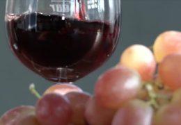 Sonnenschutz durch Weintrauben