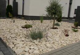 Keine Steingärten in Hessen?
