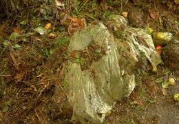 Bio-Abfallbeutel nur schwer kompostierbar