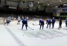 Huskies und Löwen vor ihrem Start in die neue Eishockeysaison