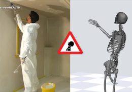 Bionic-Forschung in Kaiserslautern