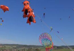 Drachenfestival in Iba bei Bebra