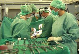 Umfrage zur Organspende-Regelung