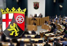 Das politische Jahr 2020 in Rheinland-Pfalz