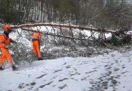 Heftige Schneefälle sorgen für große Probleme