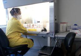 Frankfurter Methode erhöht Corona-Testkapazitäten um ein Vielfaches