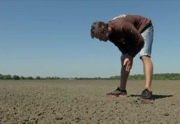 Landwirte klagen über Trockenheit