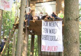 Dannenröder Forst: Proteste gegen den Ausbau der A49