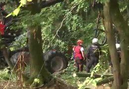 Trotz Protest gegen den Ausbau der A49: Rodung der Bäume beginnt