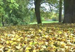 Goldener Oktober in Bad Nauheim