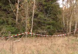 Fünf Jahre nach ihrem Verschwinden: Pilzesammler entdeckt Leiche von vermisster Frau