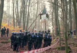 Einsatz im Dannenröder Forst: Polizisten beginnen mit Räumung