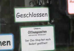 Zoo in Neuwied steht vor dem Aus