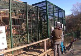 Menschen freuen sich auf einen Besuch im Zoo