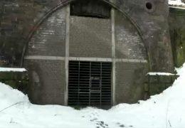 Zählappell im Fledermaus-Tunnel